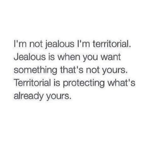 Jealous, You, and Whats: I'm not jealous I'm territorial.  Jealous is when you want  something that's not yours.  Territorial is protecting what's  already yours.