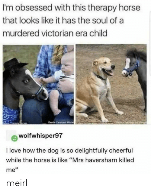 "Like It: I'm obsessed with this therapy horse  that looks like it has the soul of a  murdered victorian era child  Gende Carousal Minia  wolfwhisper97  I love how the dog is so delightfully cheerful  while the horse is like ""Mrs haversham killed  me"" meirl"
