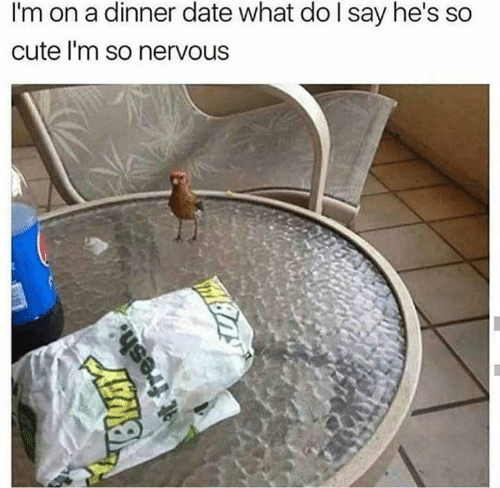 Cute, Date, and What: I'm on a dinner date what do l say he's so  cute l'm so nervous