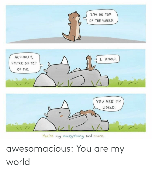 me you: I'M ON TOP  OF THE WORLD.  ACTUALLY,  I KNOW.  YOU'RE ON TOP  OF ME.  YOU ARE MY  WORLD.  You're my everything and more. awesomacious:  You are my world