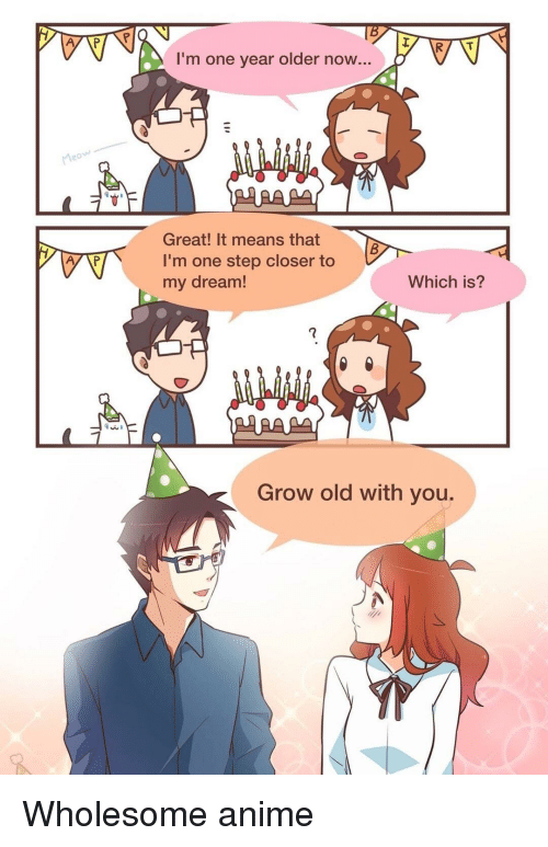 One Step Closer: I'm one year older now...  Great! It means that  I'm one step closer to  my dream!  Which is?  Grow old with you. <p>Wholesome anime</p>