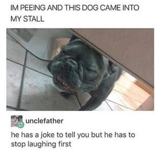 Dog, First, and You: IM PEEING AND THIS DOG CAME INTO  MY STALL  unclefather  he has a joke to tell you but he has to  stop laughing first