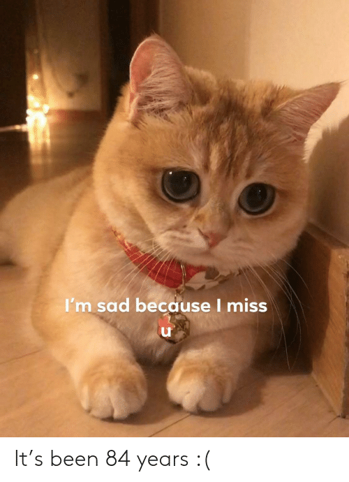 84 Years: I'm sad because I miss It's been 84 years :(