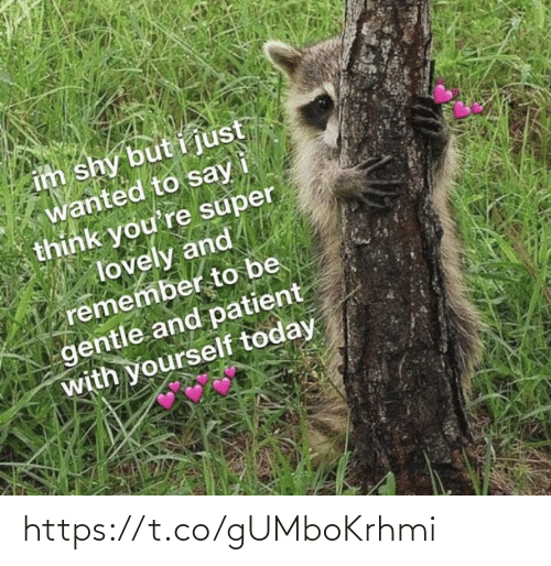 Just Wanted: im shy but i just  wanted to say  think you're super  lovely and  remember to be  gentle and patient  with yourself today https://t.co/gUMboKrhmi