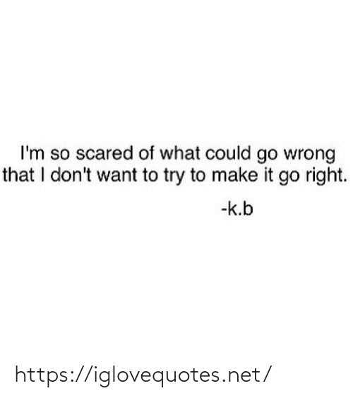 Dont Want To: I'm so scared of what could go wrong  that I don't want to try to make it go right.  -k.b https://iglovequotes.net/