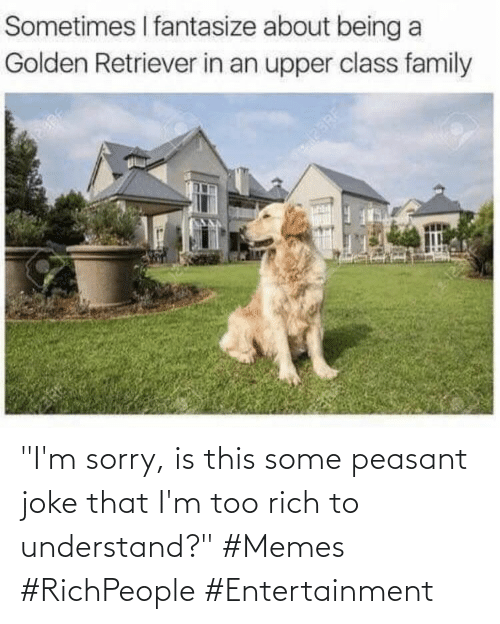 """understand: """"I'm sorry, is this some peasant joke that I'm too rich to understand?"""" #Memes #RichPeople #Entertainment"""