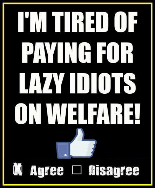 Lazy, Memes, and 🤖: I'M TIRED OF  PAYING FOR  LAZY IDIOTS  ON WELFARE!  Agree □ Disagree