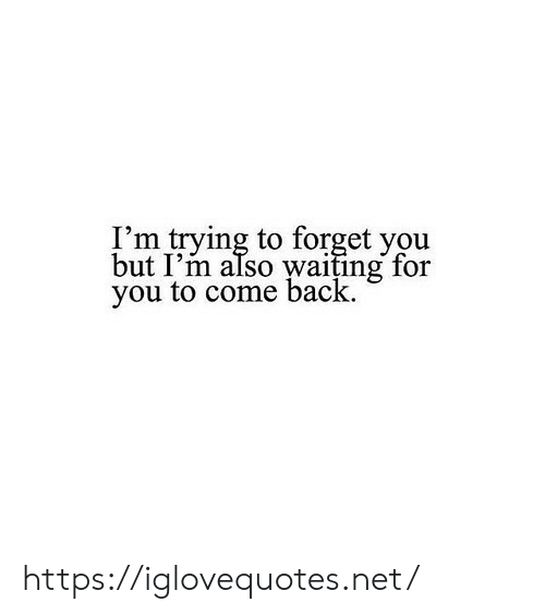Waiting..., Back, and Net: I'm trying to forget you  but I'm also waiting for  you to come back. https://iglovequotes.net/