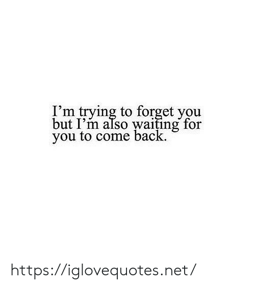 Im Trying: I'm trying to forget you  but I'm also waiting for  you to come back https://iglovequotes.net/