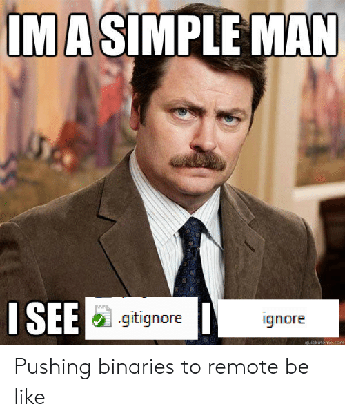 quickmeme: IMA SIMPLE MAN  ISEE  .gitignore  ignore  quickmeme.com Pushing binaries to remote be like