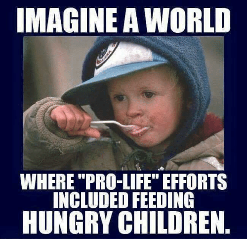 "Pro Life: IMAGINE A WORLD  WHERE ""PRO-LIFE"" EFFORTS  INCLUDED FEEDING  HUNGRY CHILDREN"