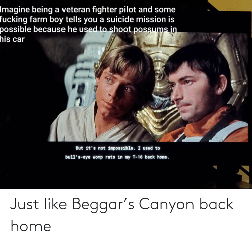 But Its: Imagine being a veteran fighter pilot and some  fucking farm boy tells you a suicide mission is  possible because he used to shoot possums in  his car  But it's not impossible. I used to  bull's-eye womp rats in my T-16 back home. Just like Beggar's Canyon back home