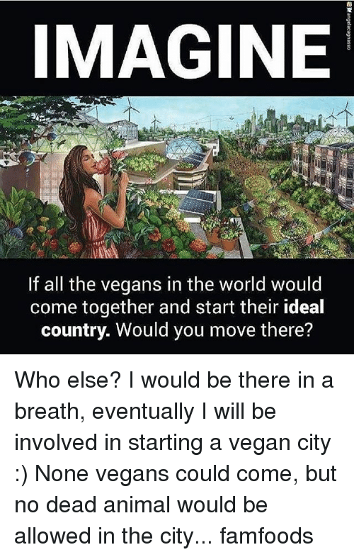 Memes, Vegan, and Animal: IMAGINE  If all the vegans in the world would  come together and start their ideal  country. Would you move there? Who else? I would be there in a breath, eventually I will be involved in starting a vegan city :) None vegans could come, but no dead animal would be allowed in the city... famfoods