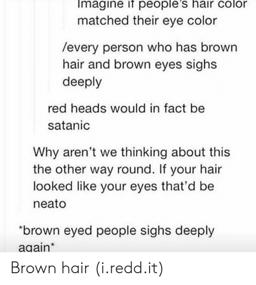 """eye color: Imagine if people's hair color  matched their eye color  /every person who has brown  hair and brown eyes sighs  deeply  red heads would in fact be  satanic  Why aren't we thinking about this  the other way round. If your hair  looked like your eyes that'd be  neato  """"brown eyed people sighs deeply  again Brown hair (i.redd.it)"""