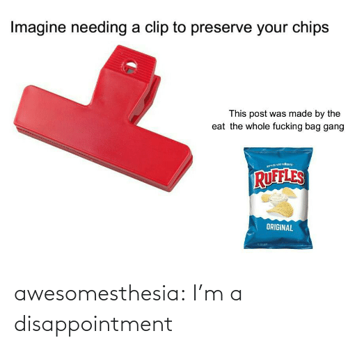 preserve: Imagine needing a clip to preserve your chips  This post was made by the  eat the whole fucking bag gang  RUFFLES  ORIGINAL awesomesthesia:  I'm a disappointment