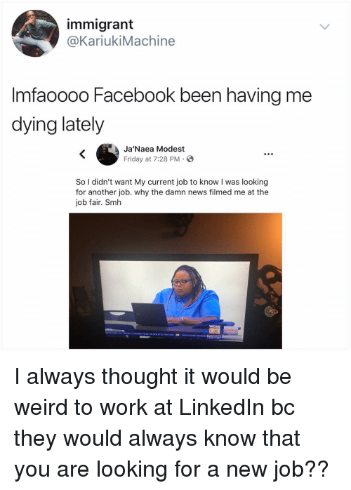 Me Dying: immigrant  @KariukiMachine  Imfaoooo Facebook been having me  dying lately  Ja'Naea Modest  Friday at 7:28 PM. E  S.  So I didn't want My current job to know I was looking  for another job. why the damn news filmed me at the  job fair. Smh I always thought it would be weird to work at LinkedIn bc they would always know that you are looking for a new job??