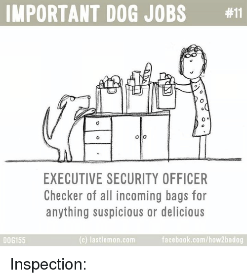 checker: IMPORTANT DOG JOBS  #11  Olio  EXECUTIVE SECURITY OFFICER  Checker of all incoming bags for  anything suspicious or delicious  facebook.com/how 2badog  (c) lastlemon.com  DOG 155 Inspection: