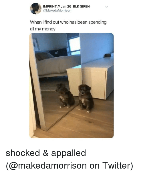 Appalled, Memes, and Money: IMPRINT // Jan 26 BLK SIREN  MakedaMorrison  When I find out who has been spending  all my money shocked & appalled (@makedamorrison on Twitter)