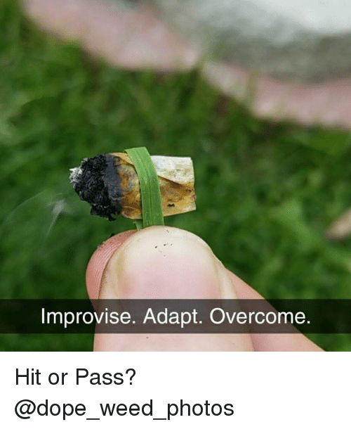 Dope, Weed, and Marijuana: Improvise. Adapt. Overc  ome Hit or Pass? @dope_weed_photos