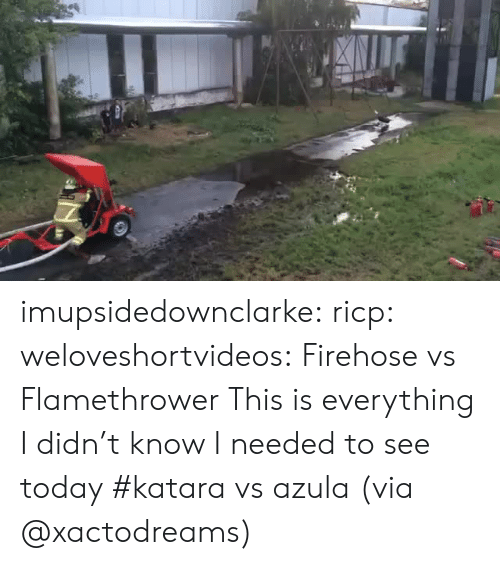 Tumblr, Blog, and Http: imupsidedownclarke:  ricp:  weloveshortvideos:  Firehose vs Flamethrower  This is everything I didn't know I needed to see today  #katara vs azula (via @xactodreams)