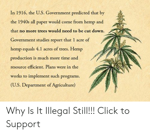 Click, Time, and Trees: In 1916, the U.S. Government predicted that by  the 1940s all paper would come from hemp and  that no more trees would need to be cut down.  Government studies  hemp equals 4.1 acres of trees. Hemp  production is much more time and  resource efficient. Plans were in the  works to implement such programs.  (U.S. Department of Agriculture)  report that 1 acre of Why Is It Illegal Still!!! Click to Support