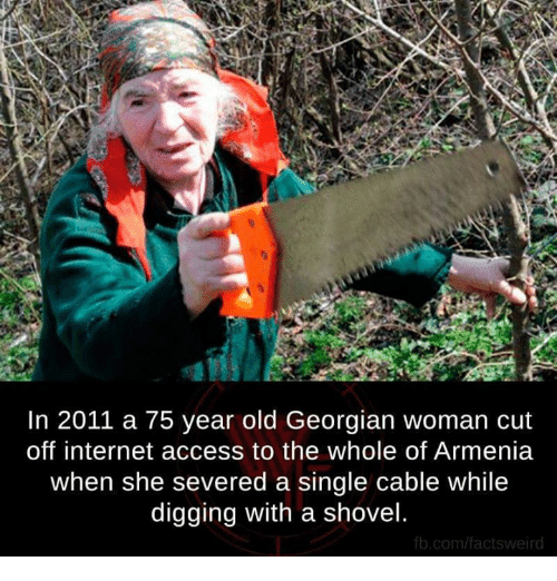 Georgian: In 2011 a 75 year old Georgian woman cut  off internet access to the whole of Armenia  when she severed a single cable while  digging with a shovel  fb.com/factsweird