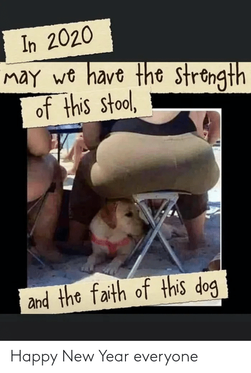 stool: In 2020  may wo have the strongth  of this stool,  and the faith of this dog Happy New Year everyone