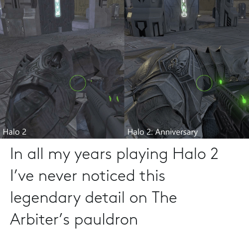 arbiter: In all my years playing Halo 2 I've never noticed this legendary detail on The Arbiter's pauldron