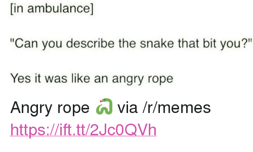 """Yes It Was: [in ambulance]  """"Can you describe the snake that bit you?""""  Yes it was like an angry rope <p>Angry rope 🐍 via /r/memes <a href=""""https://ift.tt/2Jc0QVh"""">https://ift.tt/2Jc0QVh</a></p>"""