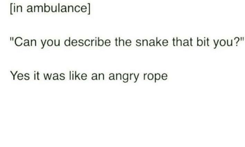 """Yes It Was: [in ambulance]  """"Can you describe the snake that bit you?""""  Yes it was like an angry rope"""
