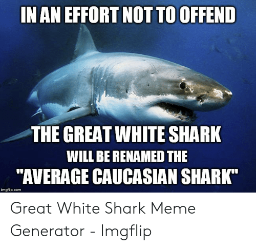 """Generator Imgflip: IN AN EFFORT NOT TO OFFEND  THE GREAT WHITE SHARK  WILL BE RENAMED THE  """"AVERAGE CAUCASIAN SHARK  imgflip.com Great White Shark Meme Generator - Imgflip"""