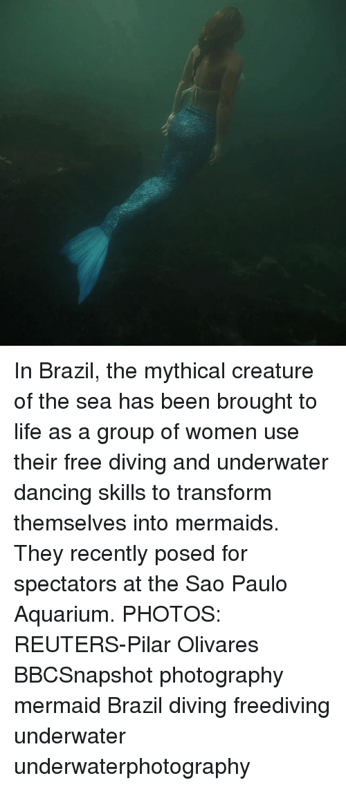 transformer: In Brazil, the mythical creature of the sea has been brought to life as a group of women use their free diving and underwater dancing skills to transform themselves into mermaids. They recently posed for spectators at the Sao Paulo Aquarium. PHOTOS: REUTERS-Pilar Olivares BBCSnapshot photography mermaid Brazil diving freediving underwater underwaterphotography
