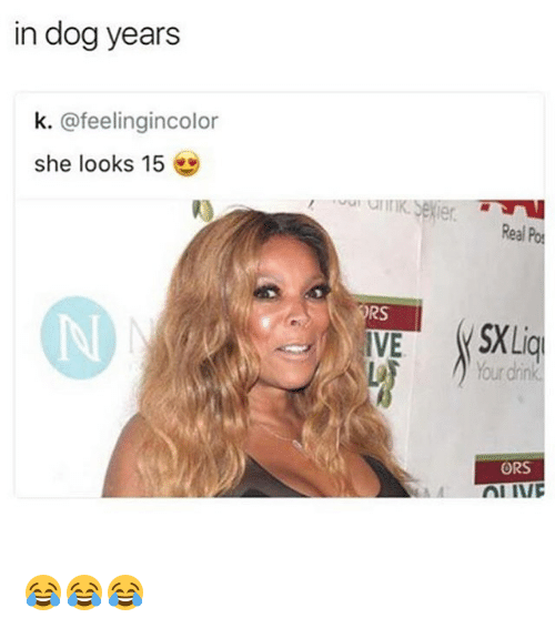 dog years: in dog years  k. @feelingincolor  she looks 15  l)  Real Po  RS  Your dink  ORS 😂😂😂