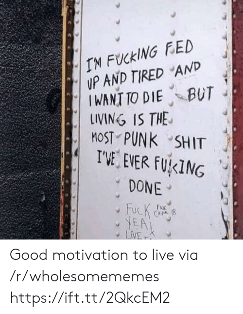 fed: IN FUCKING FED  UP AND TIRED AND  IWANT TO DIE BUT  LINING IS THE  MOST PUNK SHIT  I'VE EVER FUKING  DONE  FucK  YEA  LiVE  FroR  CAVA (8  K Good motivation to live via /r/wholesomememes https://ift.tt/2QkcEM2