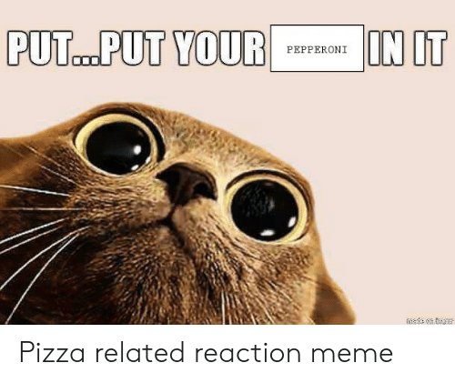 Meme, Pizza, and Pepperoni: IN IT  PUT..PUT YOUR  PEPPERONI  mafe en tgur Pizza related reaction meme