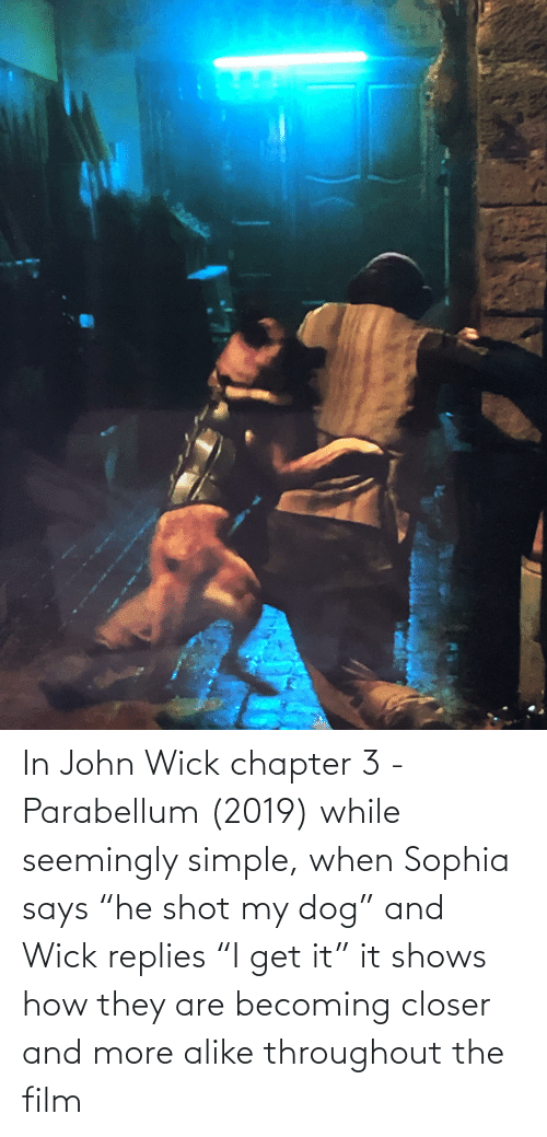 """seemingly: In John Wick chapter 3 - Parabellum (2019) while seemingly simple, when Sophia says """"he shot my dog"""" and Wick replies """"I get it"""" it shows how they are becoming closer and more alike throughout the film"""