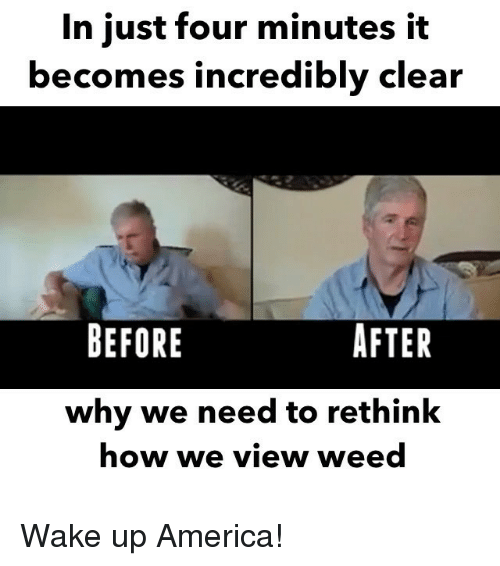wake up america: In just four minutes it  becomes incredibly clear  BEFORE  AFTER  why we need to rethink  how we view weed Wake up America!