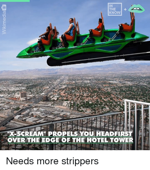 Dank, Strippers, and Hotel: IN  KNOW  XSCREAM PROPELS YOU HEADFIRST  OVER THE EDGE OF THE HOTEL TOWER Needs more strippers