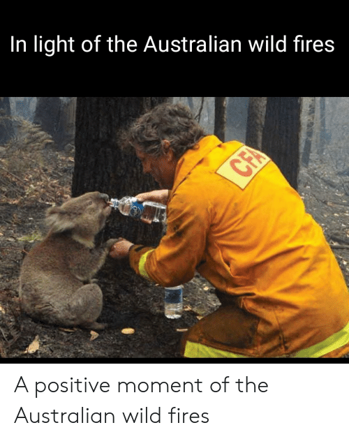 Wild, Australian, and Cfa: In light of the Australian wild fires  CFA A positive moment of the Australian wild fires