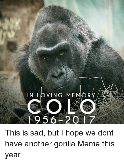 Memes, 🤖, and Gorilla: IN LOVING ME  R  COLO  1956 2017 This is sad, but I hope we dont have another gorilla Meme this year