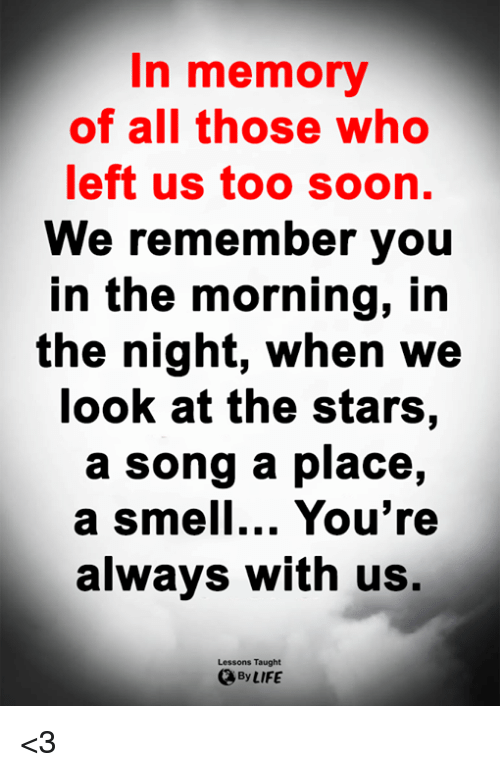 Life, Memes, and Smell: In memory  of all those who  left us too soon.  We remember you  in the morning, irn  the night, when we  look at the stars,  a song a place,  a Smell... You're  always with us,  Lessons Taught  By LIFE <3