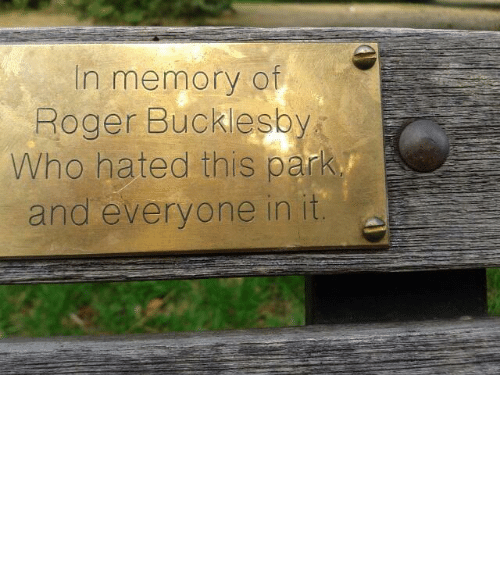 Plaque: In memory of  Roger Bucklesby  Who hated this park  and everyone in it snowcrimes:  finaah:  beautiful  When I die I want a plaque like this in my school.