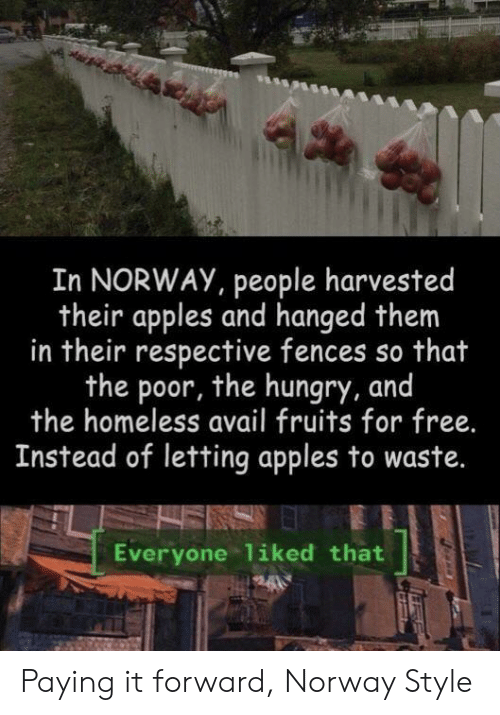 hanged: In NORWAY, people harvested  their apples and hanged them  in their respective fences so that  the poor, the hungry, and  the homeless avail fruits for free.  Instead of letting apples to waste.  Everyone liked that Paying it forward, Norway Style