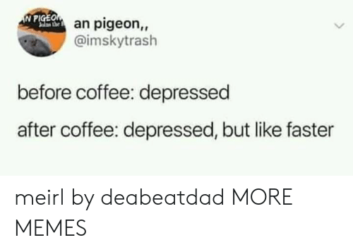 Dank, Memes, and Target: IN PIGEO  an pigeon,,  @imskytrash  before coffee: depressed  after coffee: depressed, but like faster meirl by deabeatdad MORE MEMES