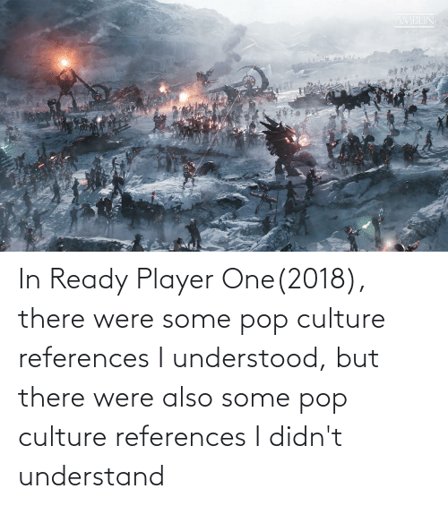 pop culture: In Ready Player One(2018), there were some pop culture references I understood, but there were also some pop culture references I didn't understand