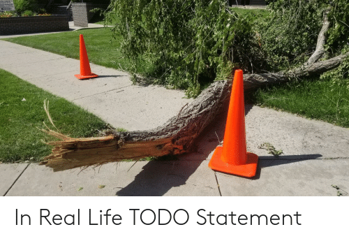 Life, Real, and Real Life: In Real Life TODO Statement