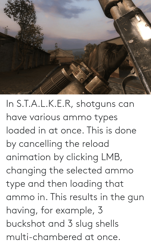 Animation: In S.T.A.L.K.E.R, shotguns can have various ammo types loaded in at once. This is done by cancelling the reload animation by clicking LMB, changing the selected ammo type and then loading that ammo in. This results in the gun having, for example, 3 buckshot and 3 slug shells multi-chambered at once.