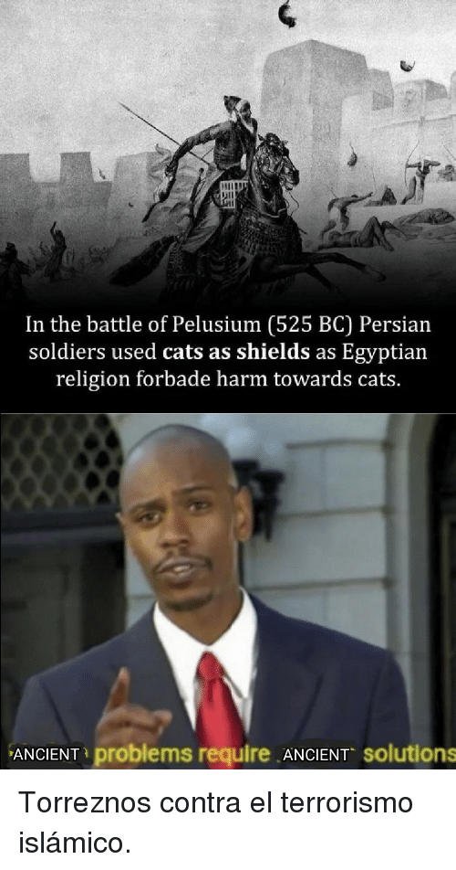 Persian: In the battle of Pelusium (525 BC) Persian  soldiers used cats as shields as Egyptian  religion forbade harm towards cats.  ANCIENT problems require ANCIENT solutions Torreznos contra el terrorismo islámico.