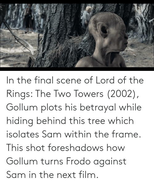 Final Scene: In the final scene of Lord of the Rings: The Two Towers (2002), Gollum plots his betrayal while hiding behind this tree which isolates Sam within the frame. This shot foreshadows how Gollum turns Frodo against Sam in the next film.