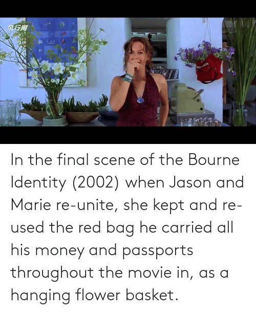 Final Scene: In the final scene of the Bourne Identity (2002) when Jason and Marie re-unite, she kept and re-used the red bag he carried all his money and passports throughout the movie in, as a hanging flower basket.
